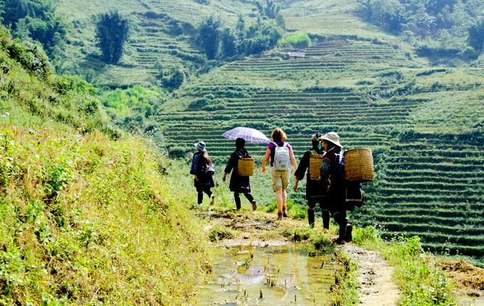 Trekking các bản làng xung quanh trung tâm sapa.
