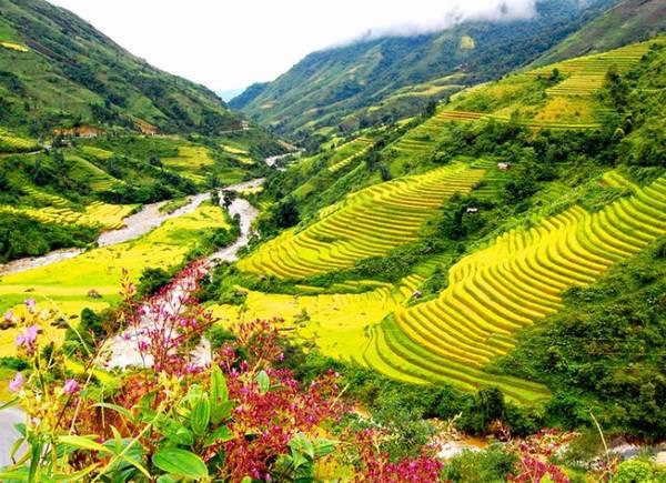 Thung lũng Mường Hoa.