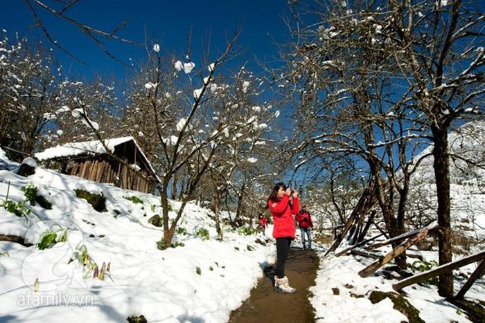 Tuyết rơi trắng xoá ở Sapa những ngày đông