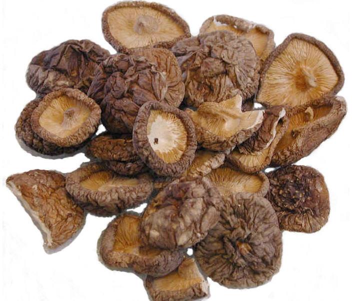 Đặc sản Sapa - Nấm hương rừng