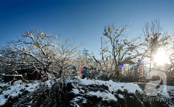 Vẻ đẹp cổ tích ở Sapa mùa đông  - Tháng 12 đến tháng 2