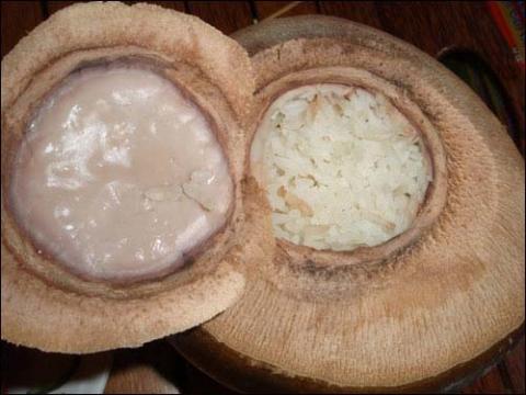 Đặc sản Bến Tre: Cơm dừa