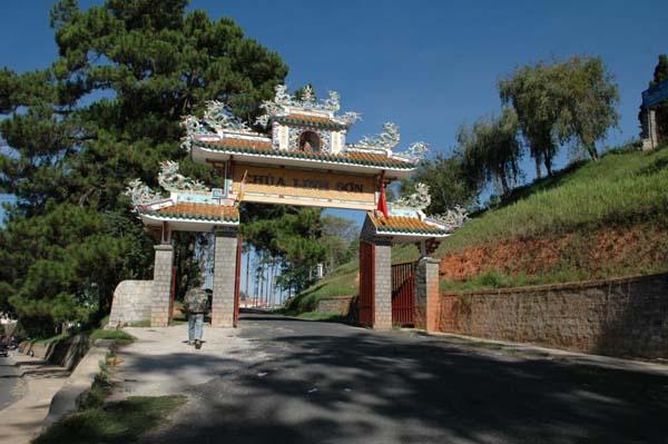 Từ tam quan vào chùa, du khách theo bậc cấp đi giữa những hàng thông, bạch đàn và cây sao cao vút.