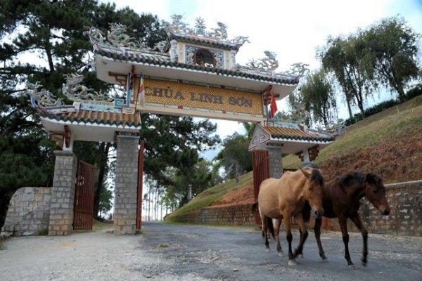 Cổng chùa Linh Sơn.