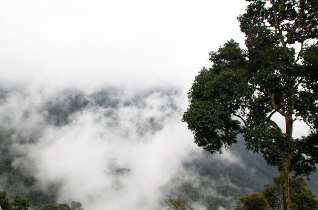 Ngắm khung cảnh hùngvĩ, hít thở không khí trong lành