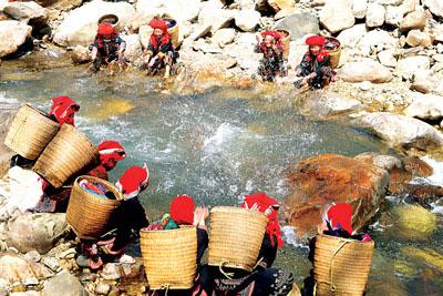 Trên đường xuống chợ, các cô gái người Dao đỏ dừng chân bên dòng suối mát