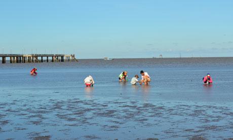 Điểm du lịch hấp dẫn: Biển Tân Thành.