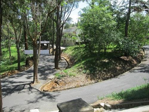 Con đường trong khuôn viên trường Đại học Đà Lạt