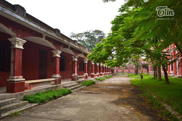 Không gian cây xanh bao trùm lấy toàn bộ khuôn viên của trường