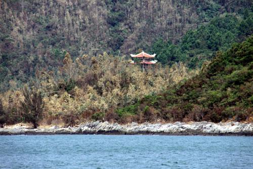 Tháp chùa thấp thoáng giữa rừng cây