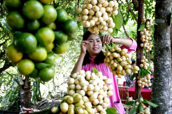 Vườn cây trĩu quả, ngọt lịm...