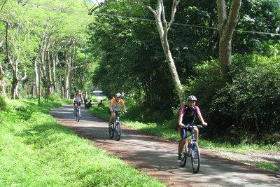 Du khách đạp xe khám phá rừng Cúc Phương