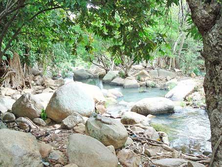 Những khu rừng với nhiều hòn đá lớn nằm quanh con xuối