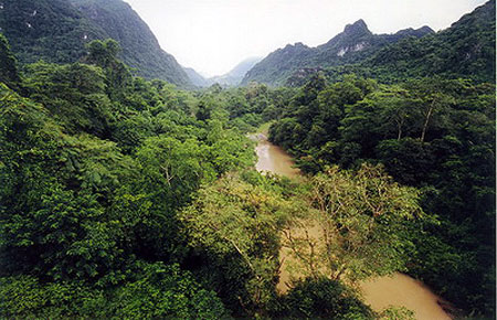 Vườn Quốc gia Phong Nha - Kẻ Bàng