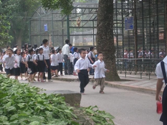 Trẻ em nô đùa trong công viên