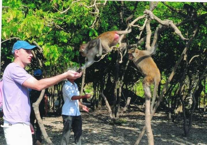 Thăm quan đảo Khỉ