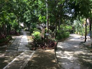 Bungalow Nhìn ra Khu vườn (3 Người lớn)