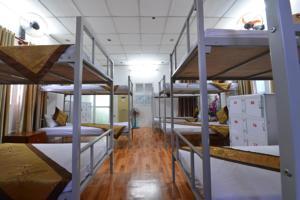 Giường trong Phòng ngủ tập thể nam nữ 14 giường