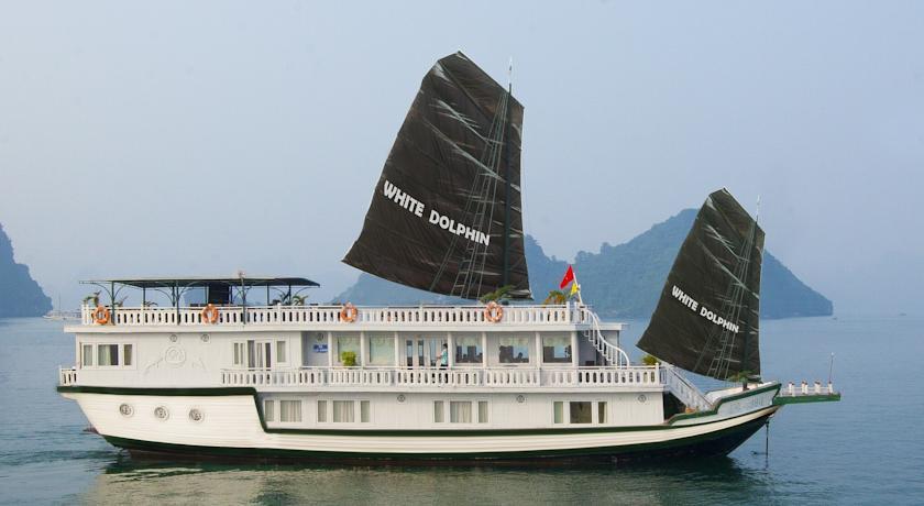 Du thuyền Luxury White Dolphin