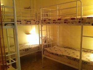 Giường trong Phòng ngủ tập thể Nữ 6 Người