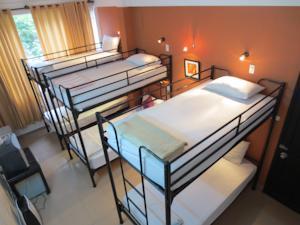 Giường trong phòng ngủ tập thể nam 6 người