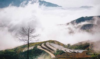 Chinh phục đỉnh Tà Xùa ở Yên Bái