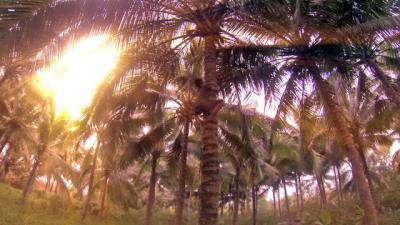 5 địa điểm mát lịm tránh nắng gần Sài Gòn