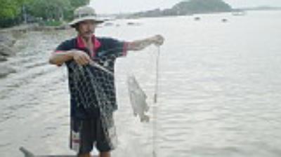 """Đi săn cá chẽm làm """"mồi"""""""