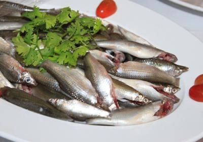 Du lịch miền tây mùa nước nổi ăn lẩu cá linh bông điên điển