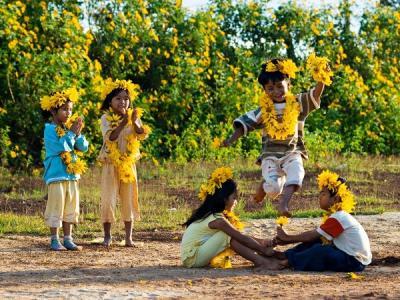 Chuẩn bị đồ nghề đi săn hoa dã quỳ sớm trên đất Ba Vì