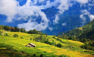 Hấp dẫn vẻ đẹp vùng cao Việt Nam