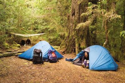 Đi cắm trại ở Tam Đảo dịp cuối tuần