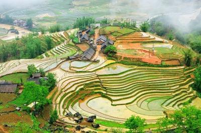 Thung lũng Tả Văn đẹp như tranh vẽ mùa nước đổ.