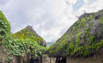 'Những cây nấm khổng lồ' ở Y Tý