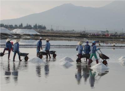 Du lịch Nha Trang khám phá ruộng muối trắng xóa bên vịnh Vân Phong