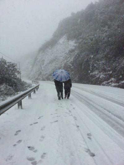 Sapa phủ tuyết trắng hút hồn dân du lịch