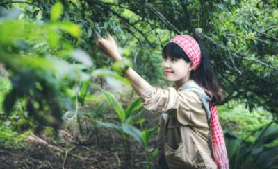 Chuyến đi hái mận Mộc Châu tháng 5 đáng nhớ của cô gái ưa xê dịch