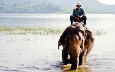 Những trải nghiệm bạn không nên bỏ lỡ ở Đắk Lắk