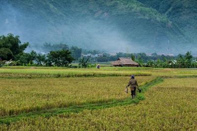 7 địa điểm du lịch bụi lý tưởng miền Trung và miền Nam