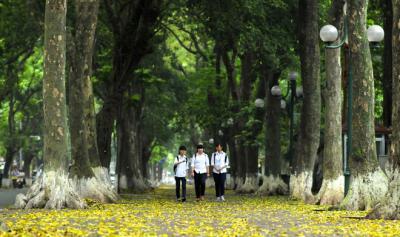 Phan Đình Phùng - Con đường lãng mạn nhất  Hà Nội