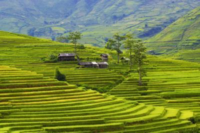 Vẻ đẹp quyến rũ vùng cao Việt Nam