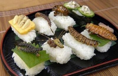 Khám phá tập quán ăn côn trùng  trên thế giới