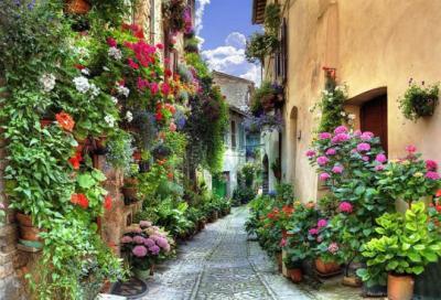Lạc bước trên những con đường đẹp bậc nhất thế giới