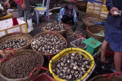Một ngày dong chơi chợ trời hải sản Hạ Long