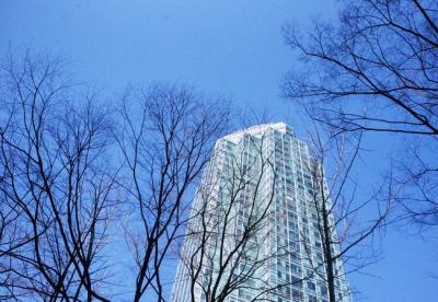 Ngày cuối đông ở Seoul