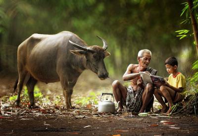 Những hình ảnh Indonesia gần gũi làng quê Việt