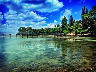 Những hòn đảo giữa thành phố đẹp nhất thế giới
