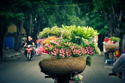 Rực sỡ sắc hoa trên đường phố Hà Nội