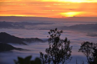 Sáng sớm đầy sương mờ trên đỉnh Mẫu Sơn