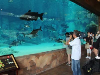 Singapore khai trương công viên sông đầu tiên tại châu Á